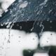Schutzschirm Regenschirm bei Regen